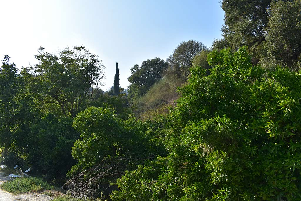 anerades-nature-trail_04
