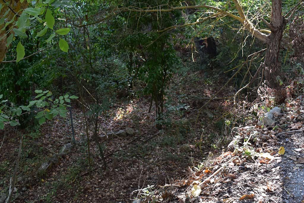 anerades-nature-trail_05