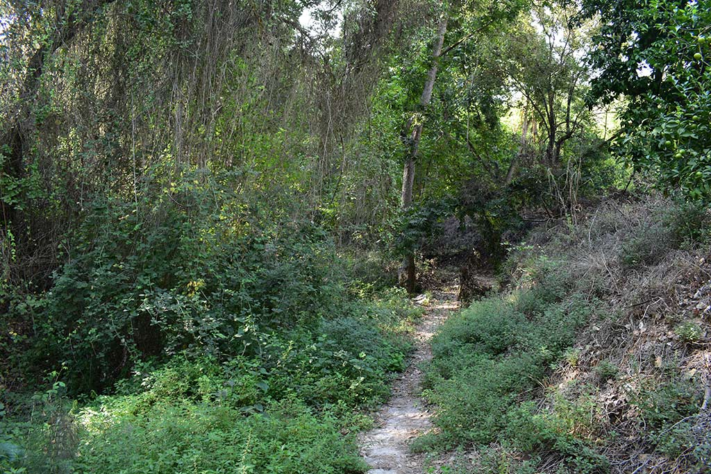 anerades-nature-trail_07