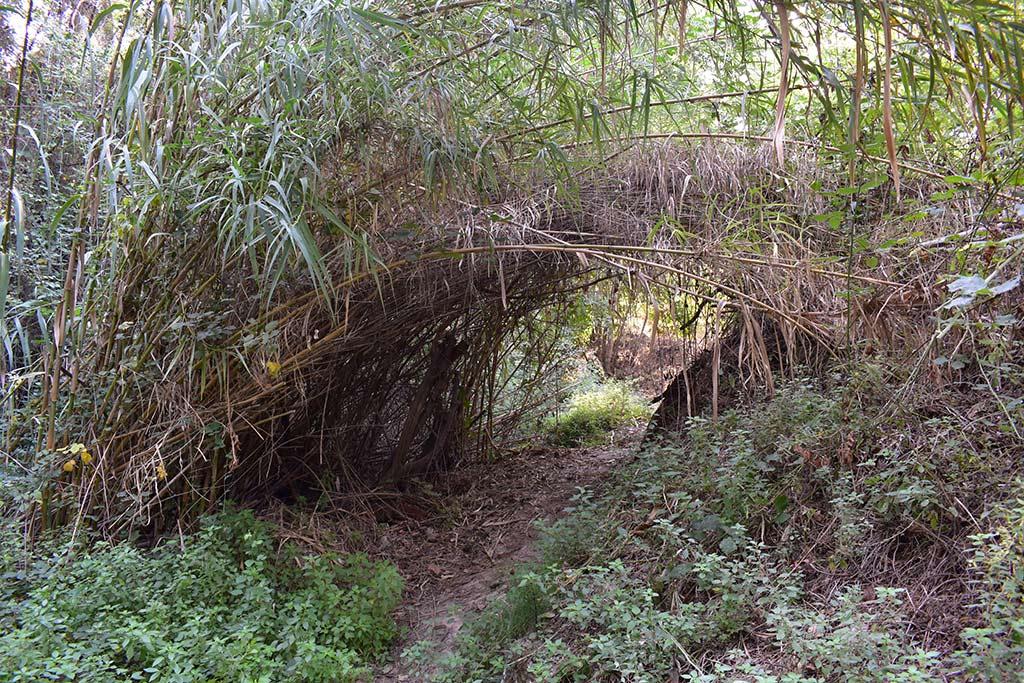 anerades-nature-trail_08