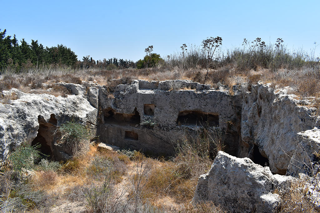 the-necropolis-in-the-neopolis_05