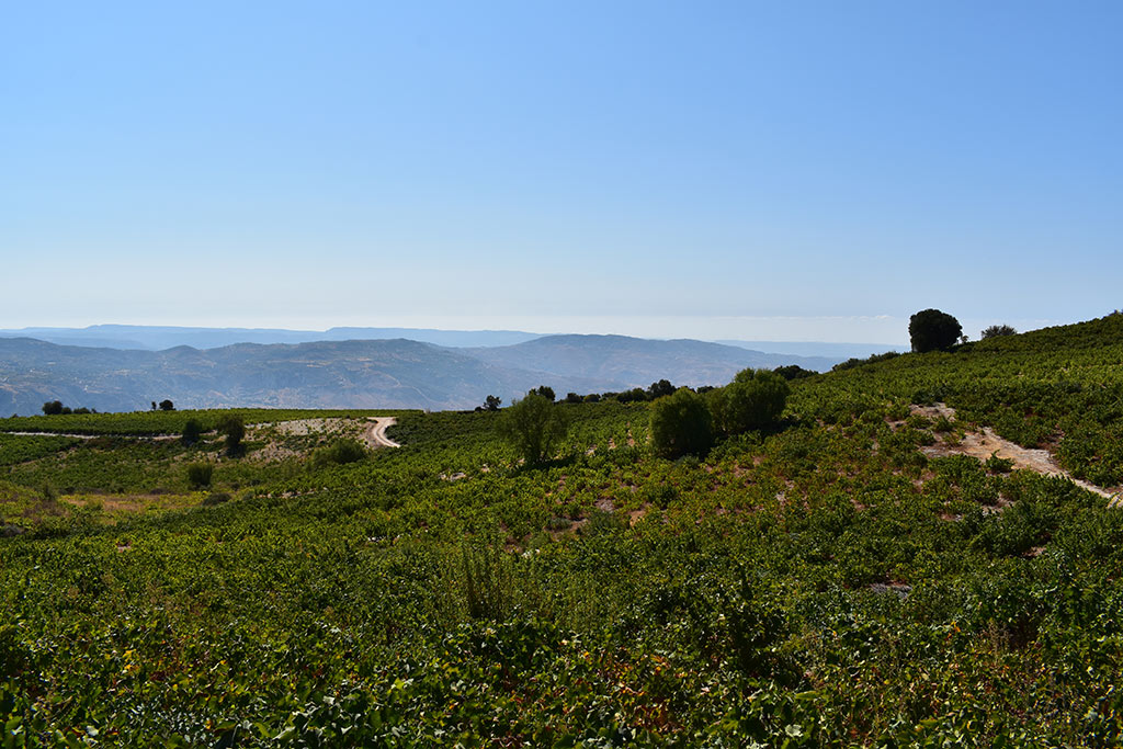panagia-hills_04