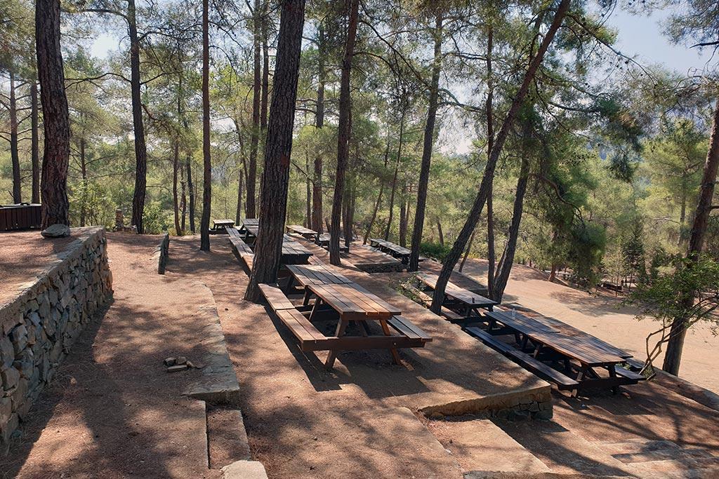 paphos-forest-drive_02