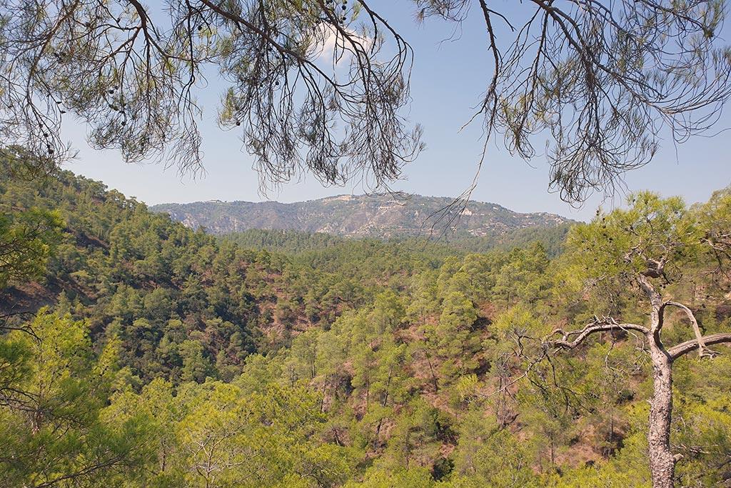 paphos-forest-drive_03