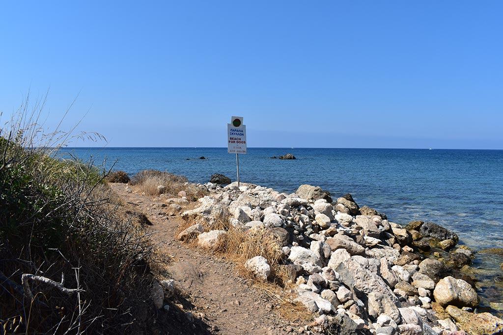 polis-beaches-part-1_04-dog