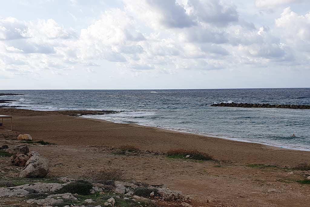 venus-beach-cleanup_02