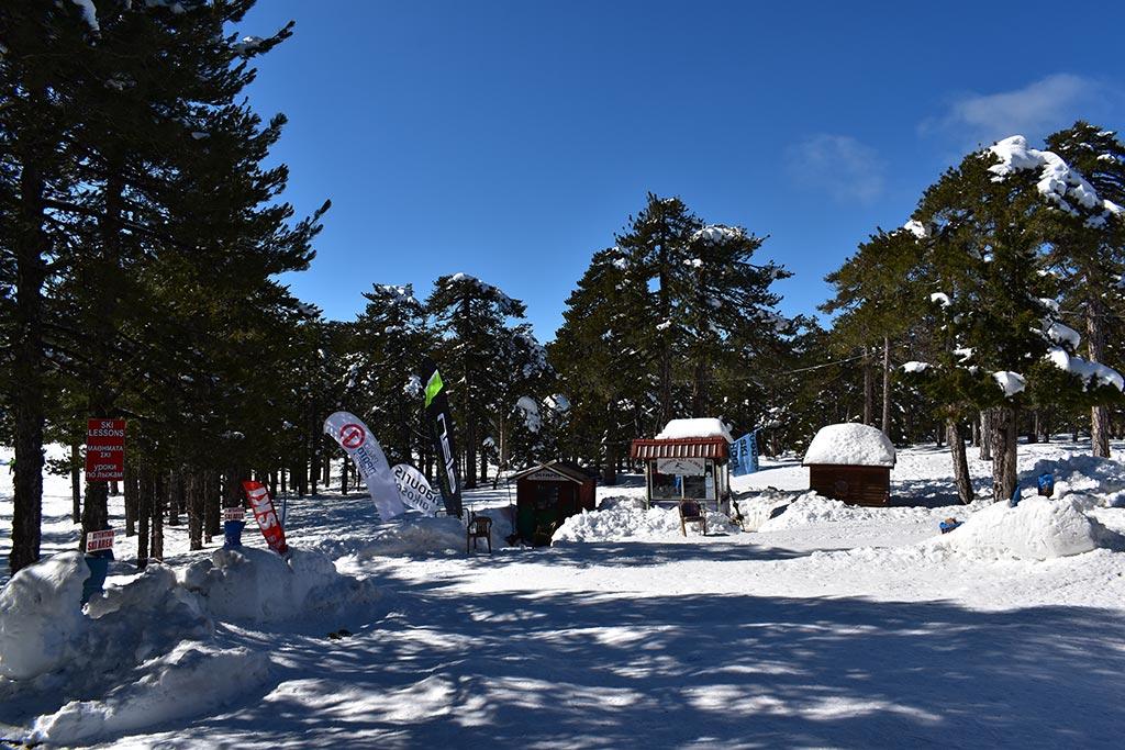 winter-wonderland-2020_04