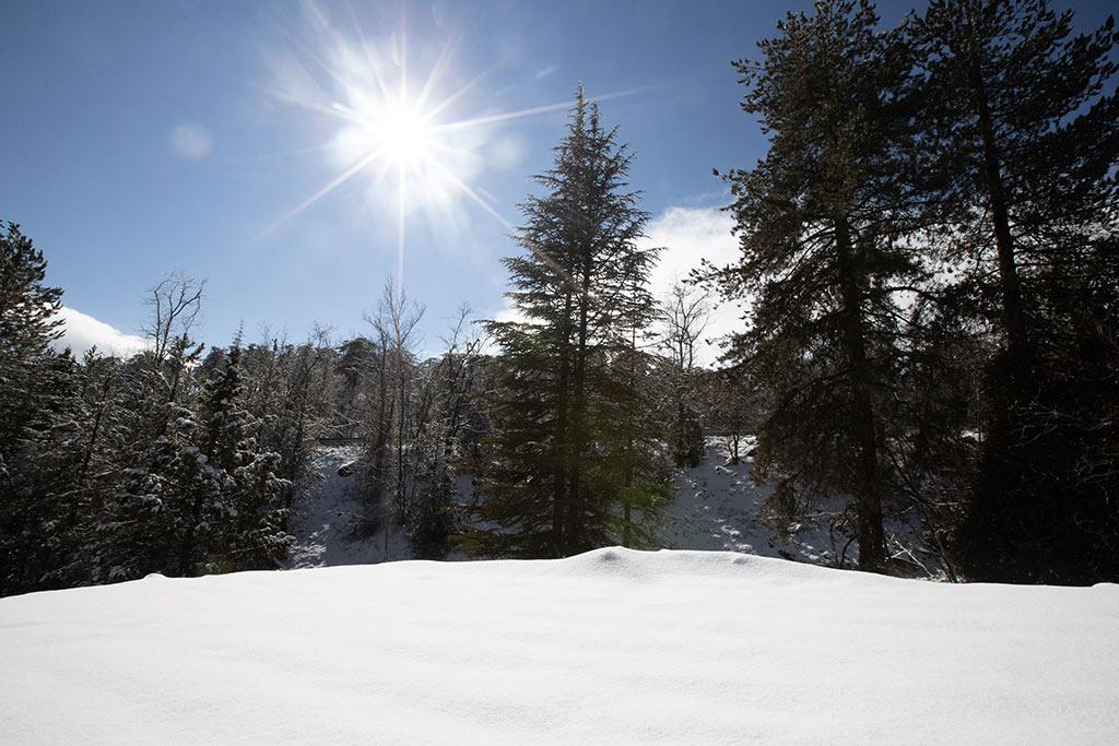 troodos-winter-snow_01