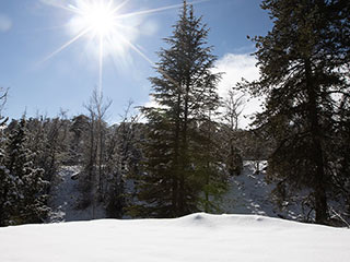 Troodos Winter Snow