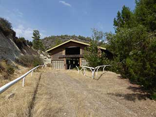 The Abandoned Rancho Appaloosa