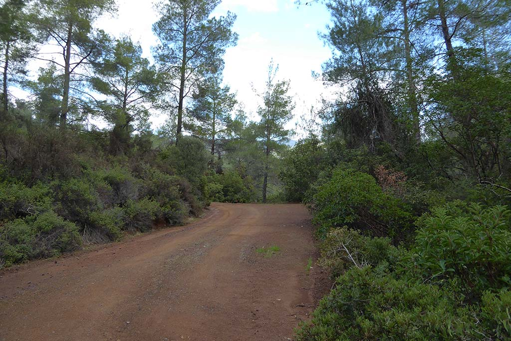 paphos_forest_mine_02