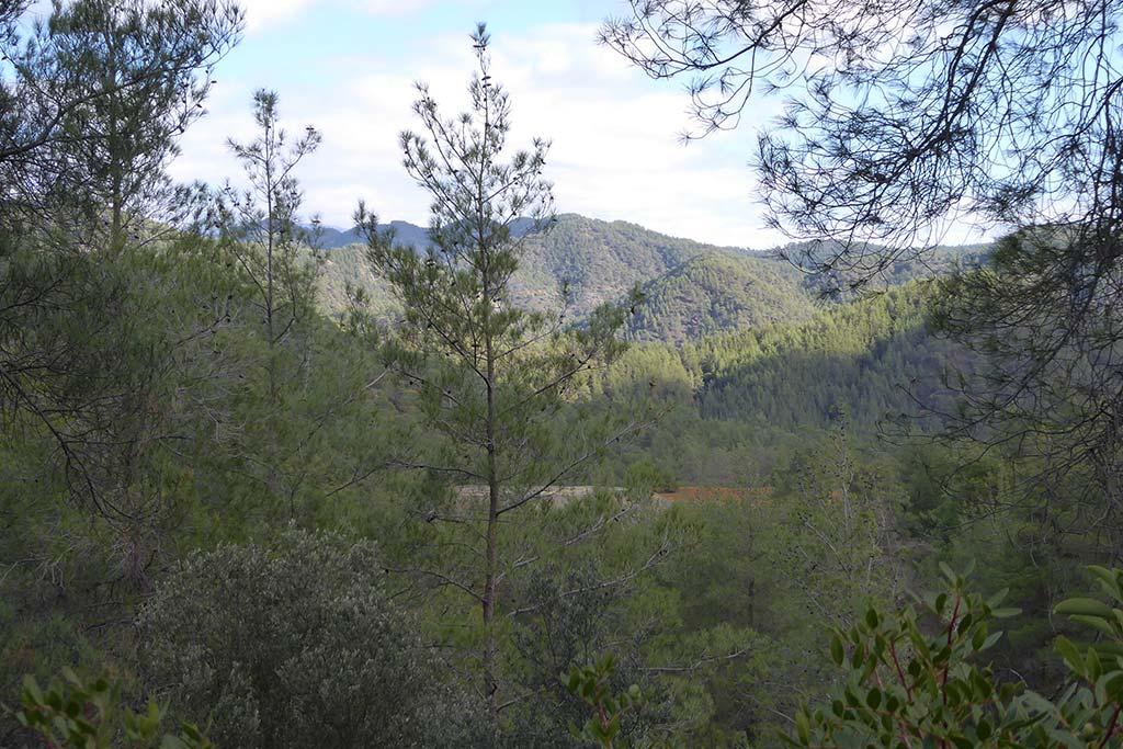 paphos_forest_mine_03