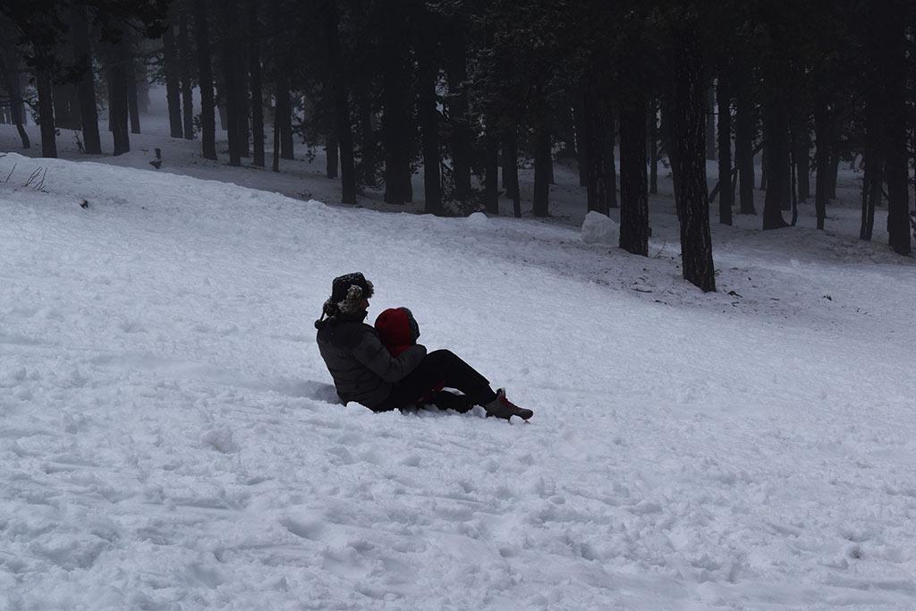 winter-wonderland-2019_10