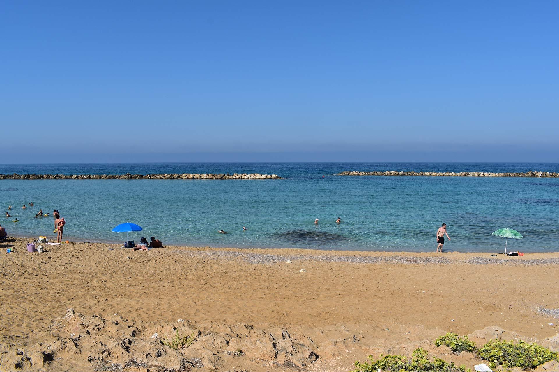 venus-beach_02