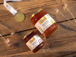 Cypriot honey wins first prize at World Beekeeping Awards