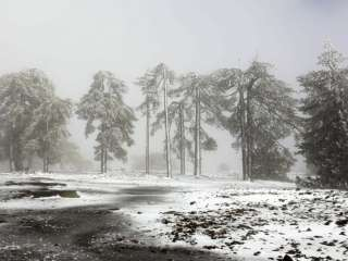 Roads partially closed to Troodos, more snow expected