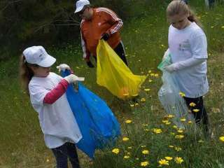 Yearly clean-up 'attracted more people than ever'